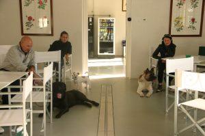 Sala relax dove potete comodamente rilassarvi e dialogare in compagnia dei vostri cani