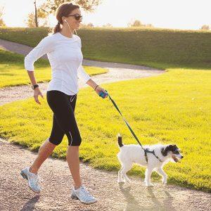 allenati-con-il-tuo-cane