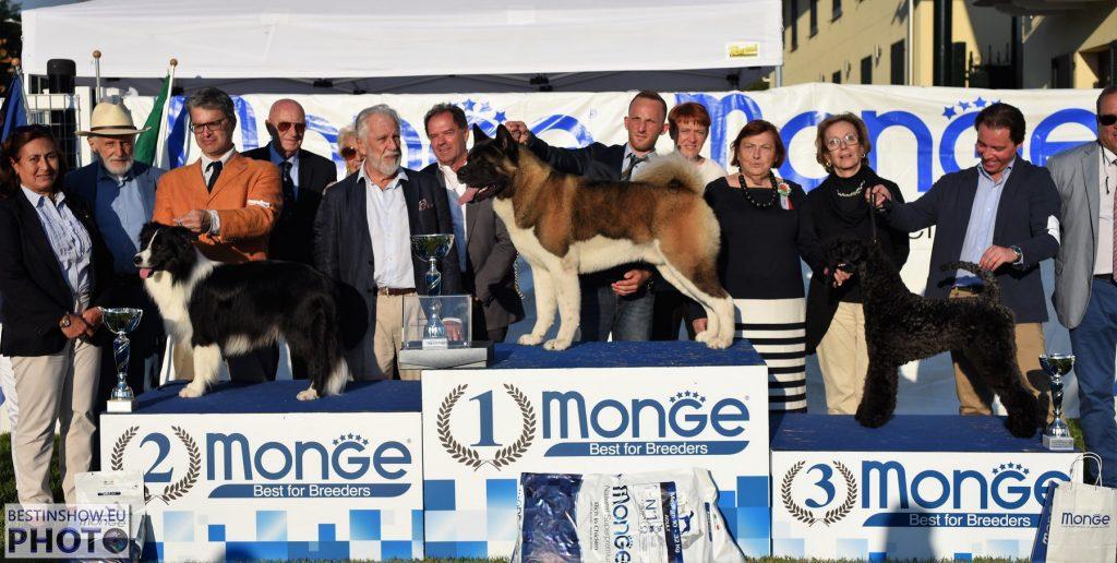 Premiazione Esposizione Nazionale Canina