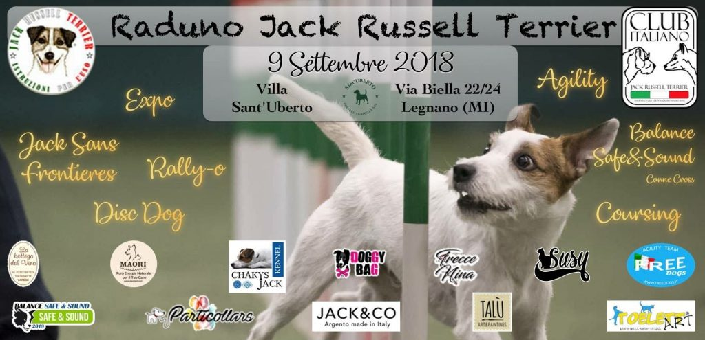 Raduno Jack Russell Terrier 9 Settembre 2018